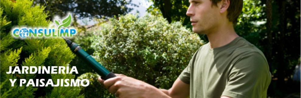 Consulimp servicios de limpieza jardineria y paisajismo for Servicios de jardineria y paisajismo